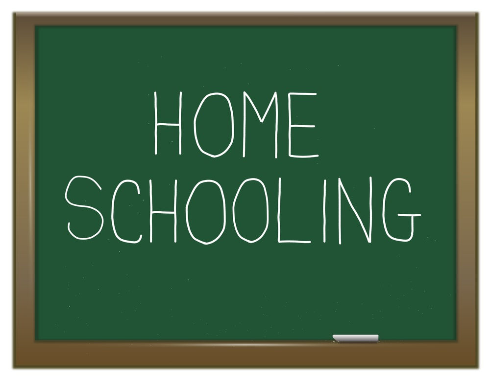 Why I Home School – Our Story